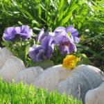 Είδη Κήπου