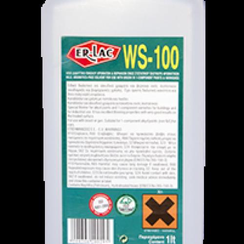 ΔIΑΛYΤΙΚΟ WS-100