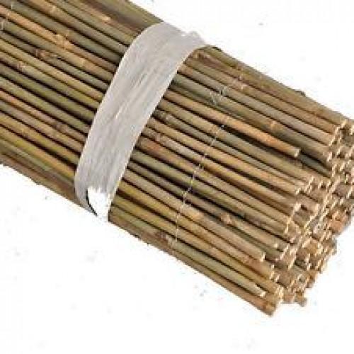 Bamboo ΜΑΣΙΦ 8 – 10